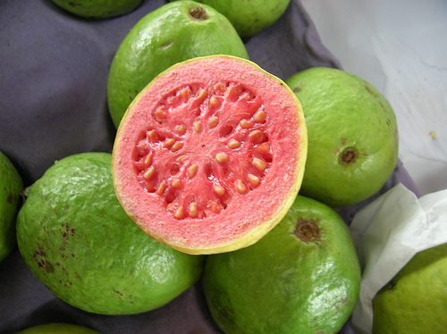 Guava pacing tim kane books how to eat a guava by esmeralda santiago there ccuart Image collections